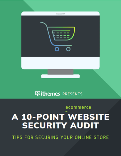 How to Secure Your Online Store for the Holidays: A 10-Point Website Security Audit